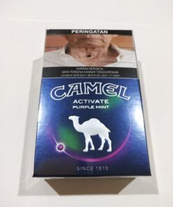 camel active purple mint blueberry cigarettes
