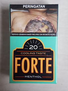 Djarum Forte Clove Cigarettes