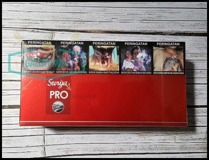 gudanggaram surya professional clove cigarettes carton